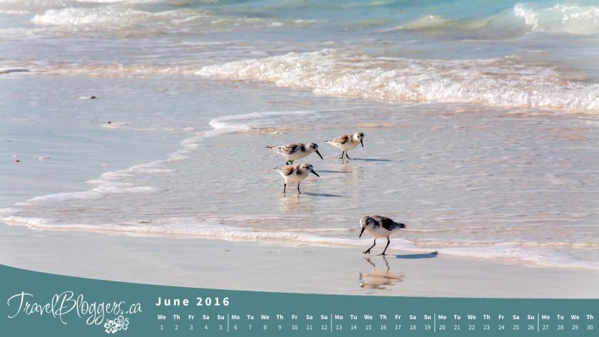 TravelBloggers.ca, Moriah Cay, Exuma, Bahamas