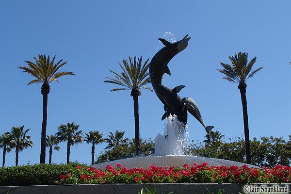 Fountain at Aquarium of the Pacific