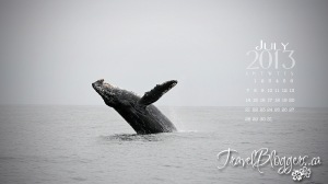 travelbloggers.ca, moterey whale watching