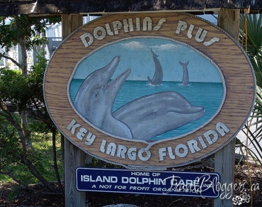 Dolphins Plus - Key Largo, Florida