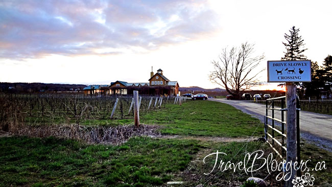 travelbloggers.ca, The Good Earth, Niagara Wine Region