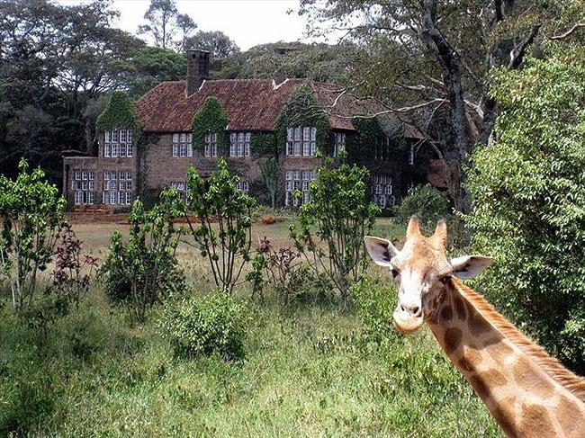 Giraffe Manor, Lang'ata Nairobi, Kenya -11