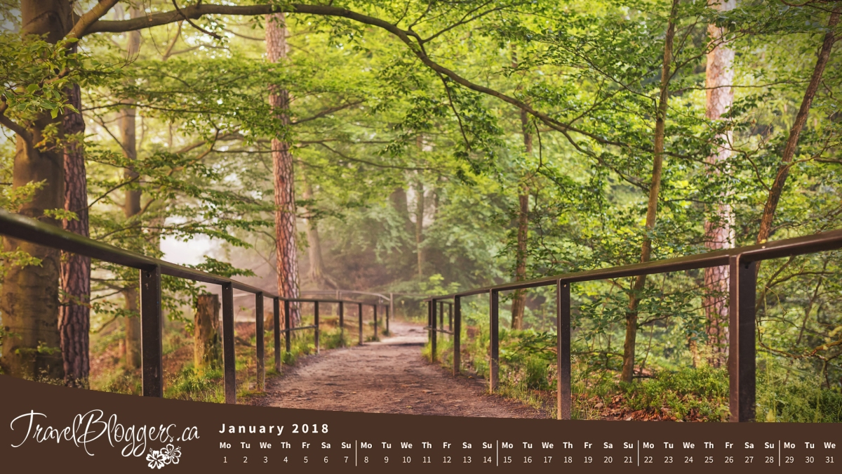 Happy New Year! - January 2018 Desktop Wallpaper Now Available!